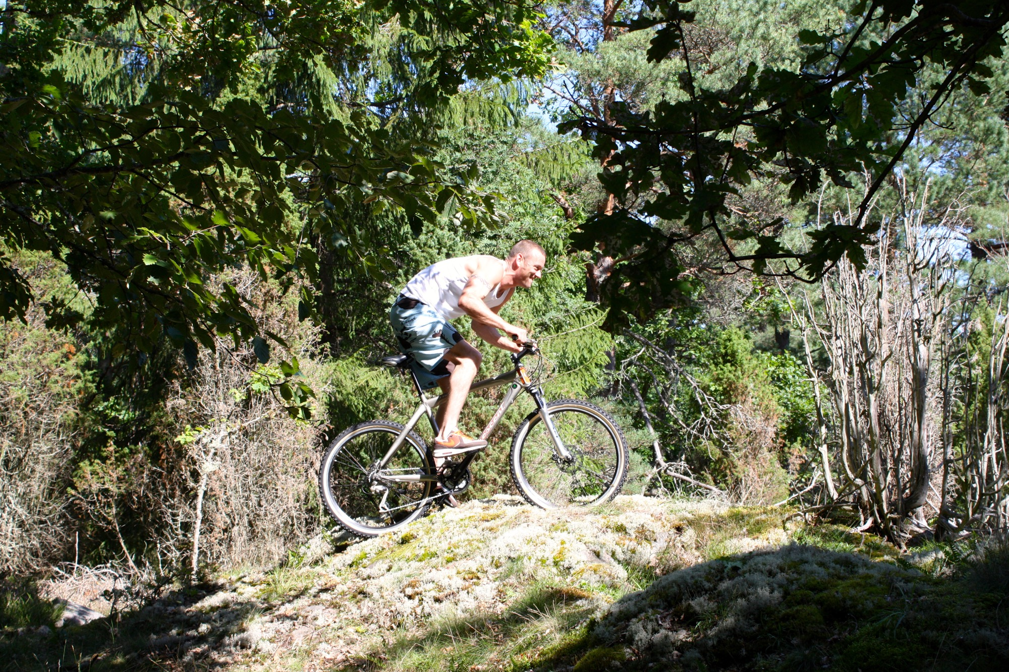 Mountainbiken-in-het-bos